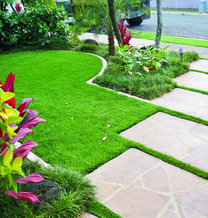 artificial turf around front lawn stepping stones
