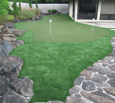 Aina Haina small yard putting green