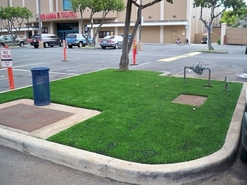 Synthetic Lawn in parking lot