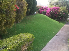 front yard hill with synthetic grass