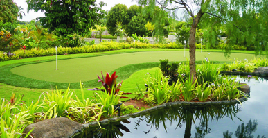residential putting green with artificail turf and natural grass