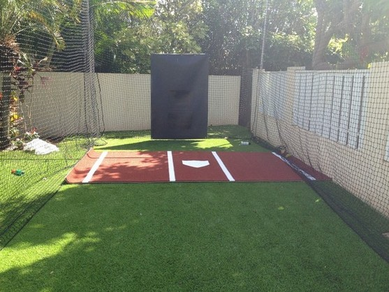 residential batting cage with synthetic grass